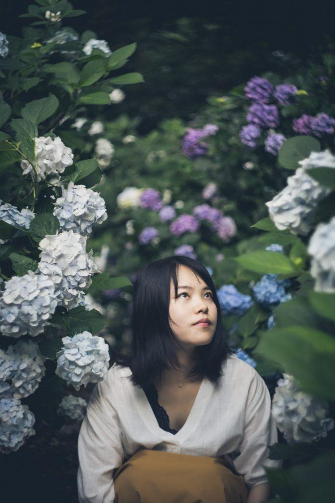 滝頭公園の紫陽花